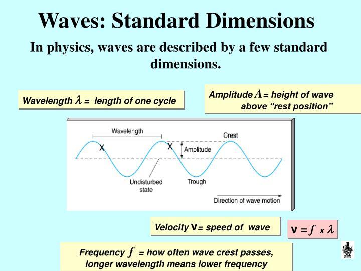 Waves: Standard Dimensions