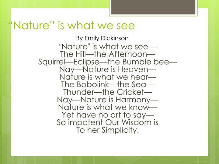 """""""Nature"""" is what we see"""