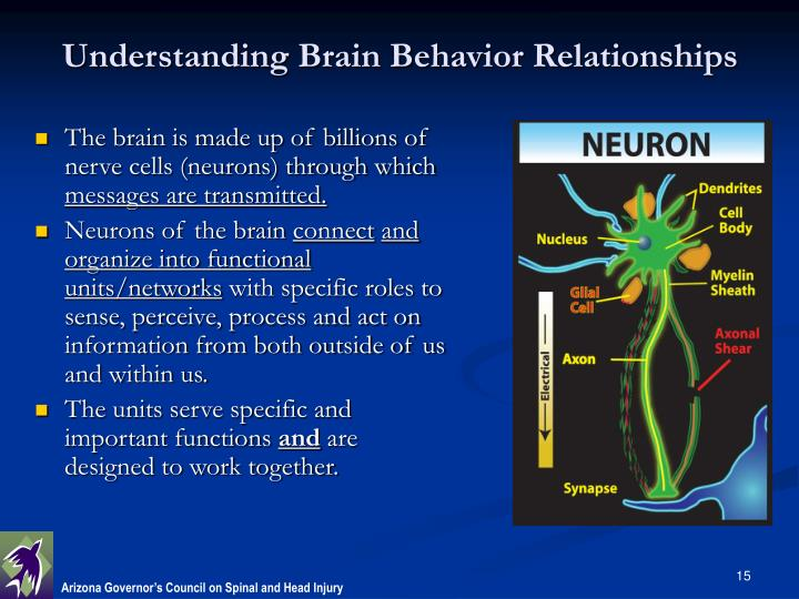 understanding male dating behavior