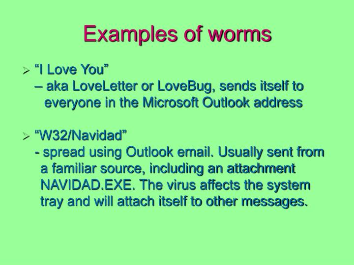Examples of worms