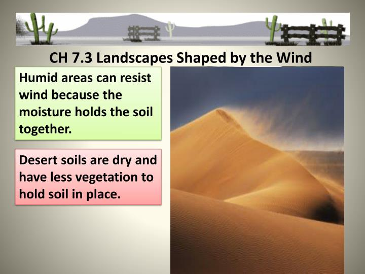 CH 7.3 Landscapes Shaped by the Wind