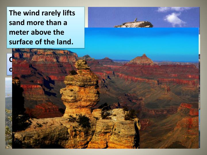 The wind rarely lifts sand more than a meter above the surface of the land.