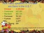 how many speakers of chinese are there in the u s