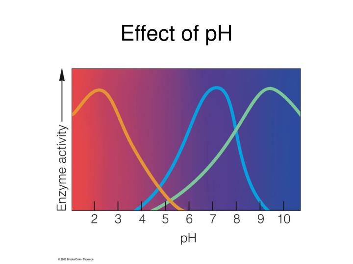 Effect of pH