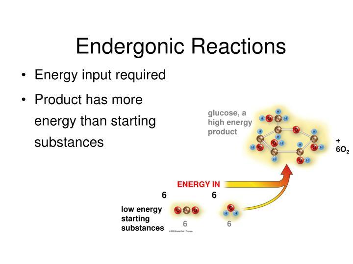 Endergonic Reactions