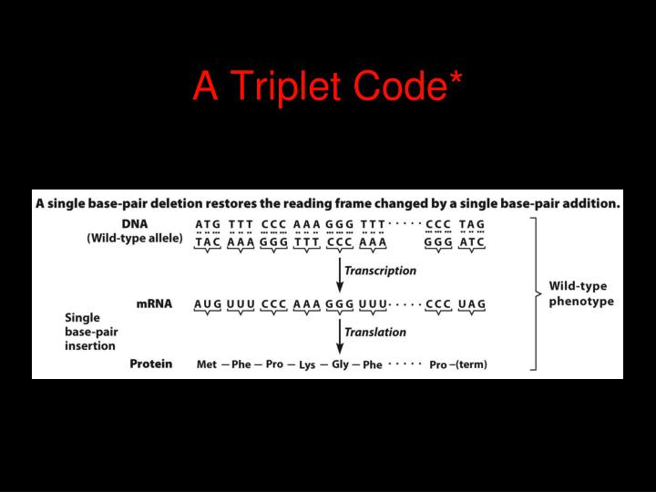 A Triplet Code*