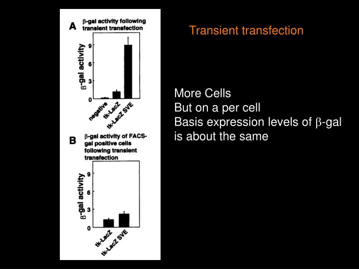 Transient transfection