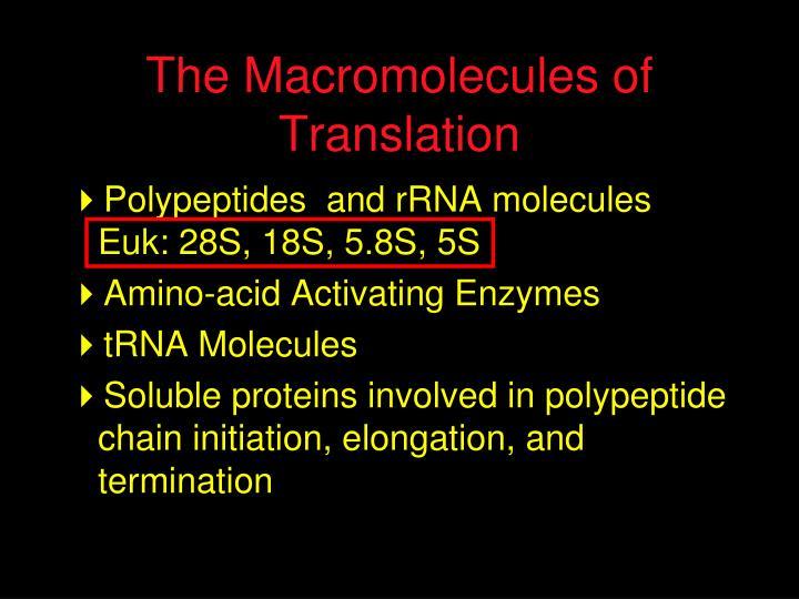 The Macromolecules of Translation