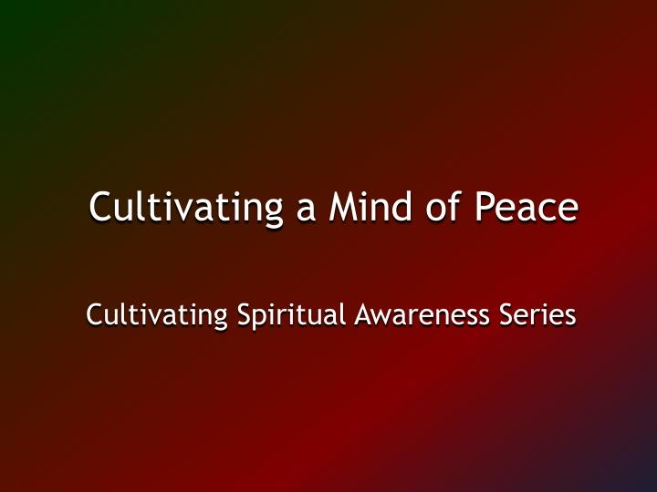 Cultivating a Mind of Peace