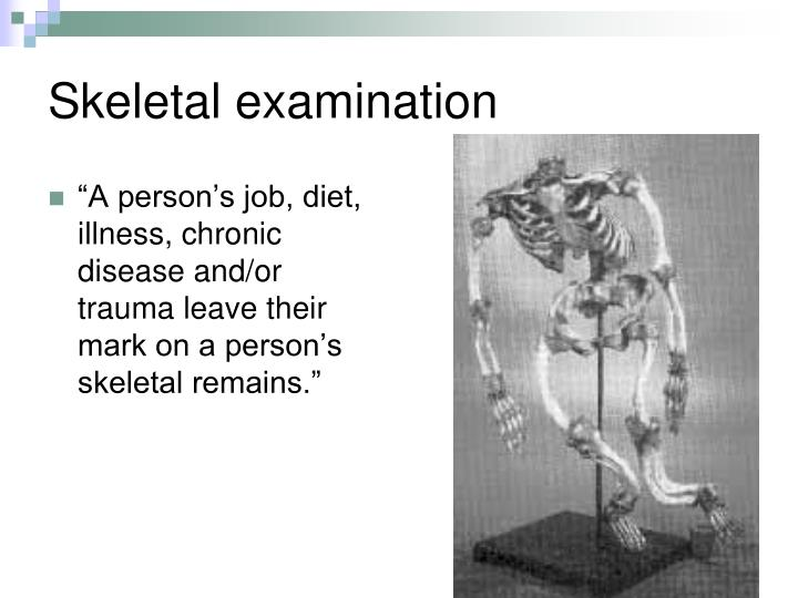 """A person's job, diet, illness, chronic disease and/or trauma leave their mark on a person's skeletal remains."""