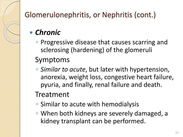 Glomerulonephritis, or Nephritis (cont.)