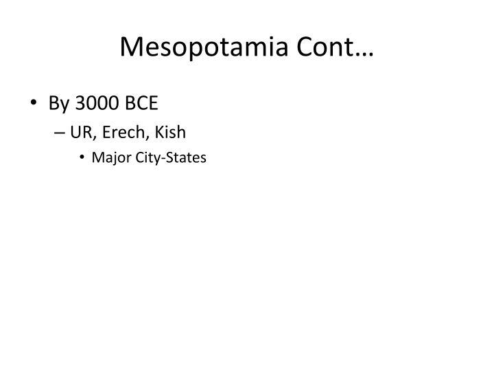Mesopotamia Cont…