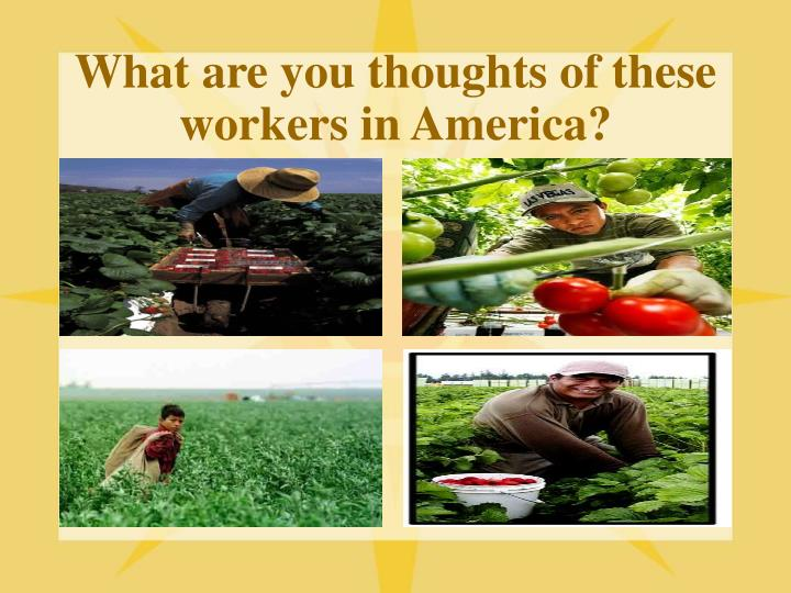 what are you thoughts of these workers in america