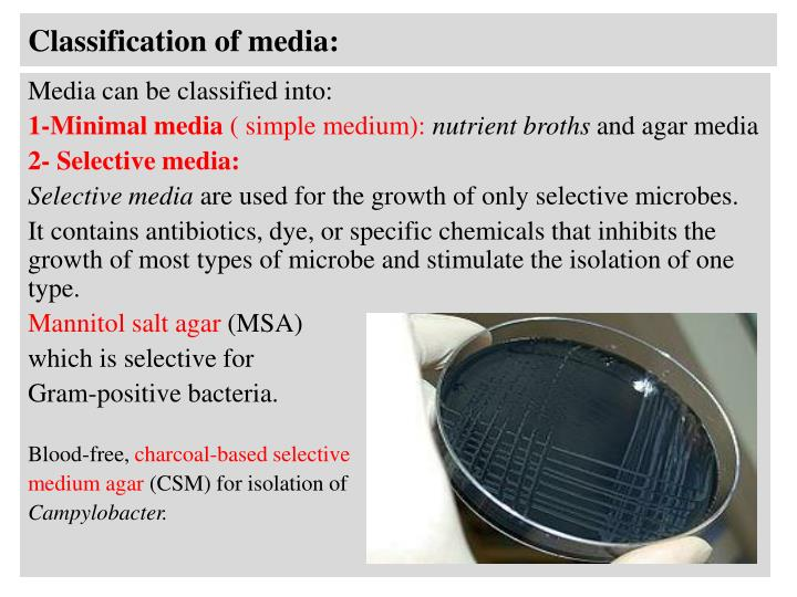 Classification of media: