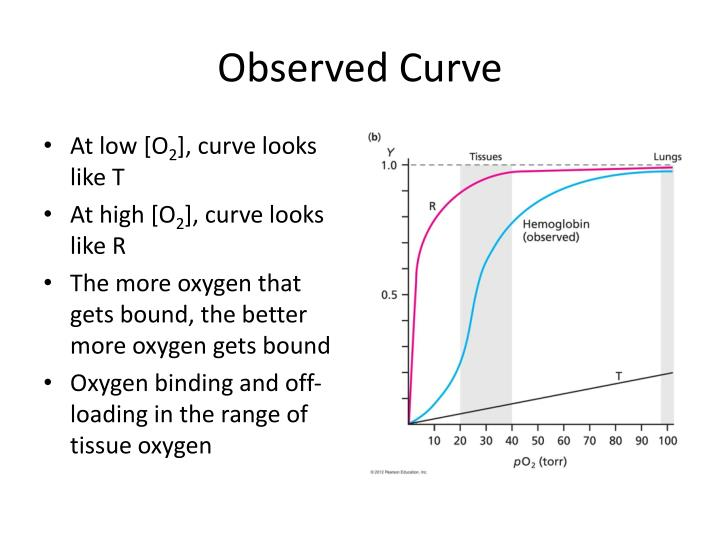Observed Curve