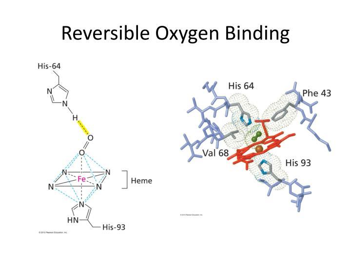Reversible Oxygen Binding