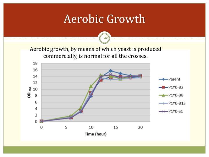Aerobic Growth