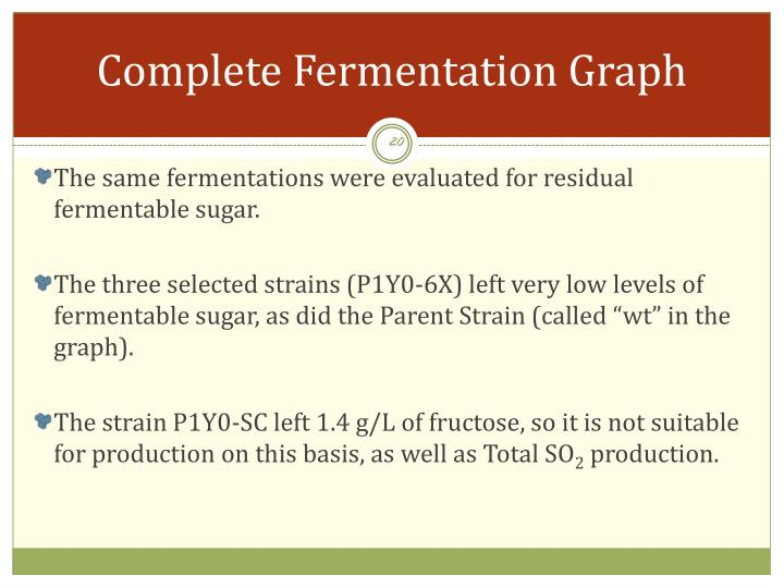 Complete Fermentation Graph