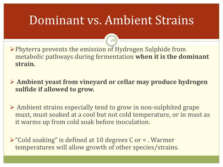 Dominant vs. Ambient Strains