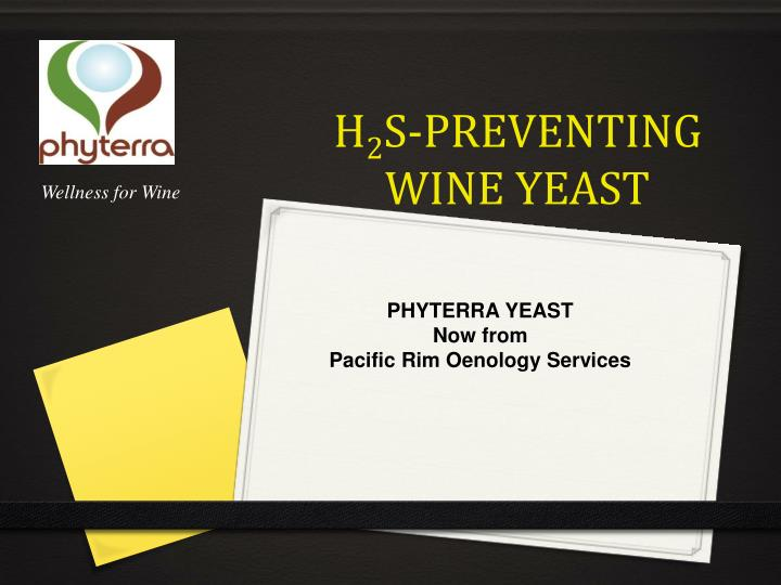 H 2 s preventing wine yeast