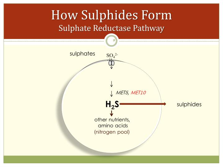 sulphates