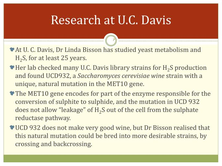 Research at U.C. Davis