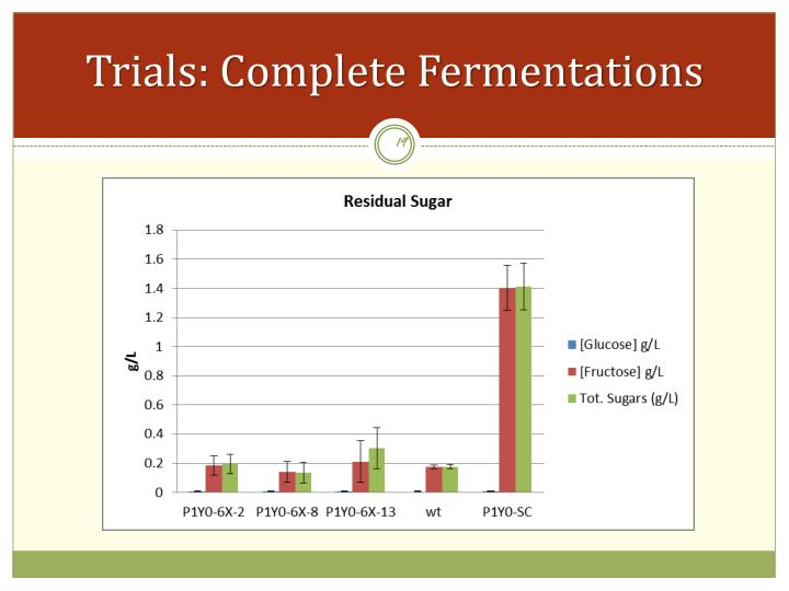 Trials: Complete Fermentations
