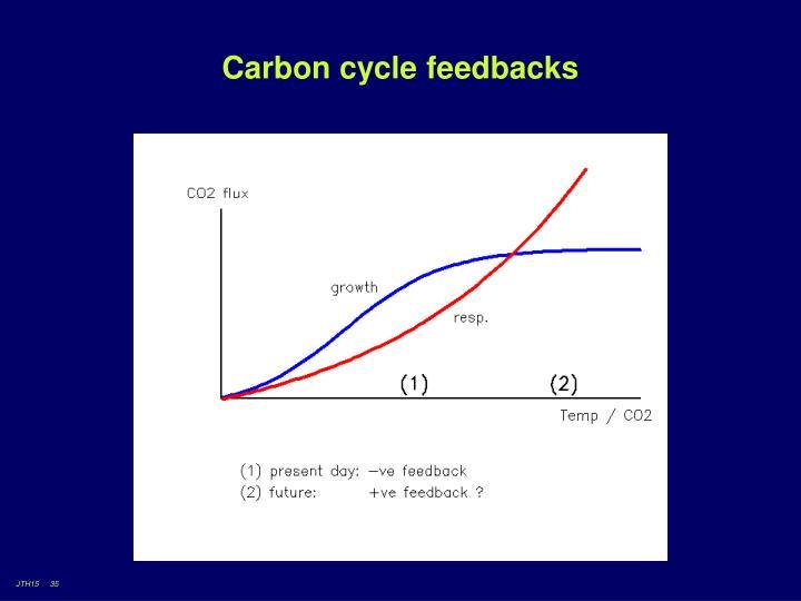 Carbon cycle feedbacks