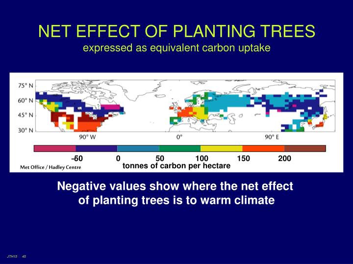 NET EFFECT OF PLANTING TREES