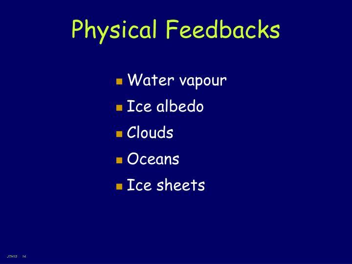 Physical Feedbacks