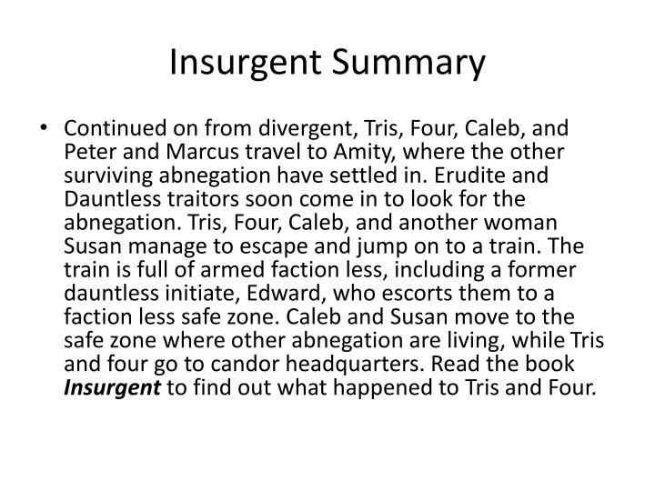 Insurgent Summary