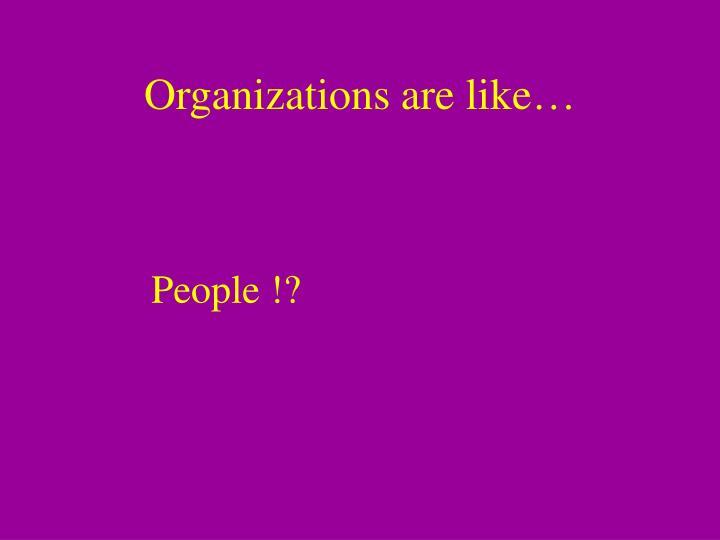 Organizations are like…