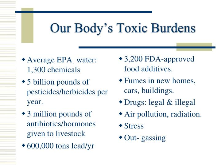 Our Body's Toxic Burdens