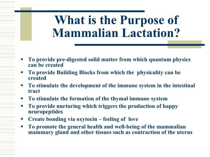 What is the Purpose of Mammalian Lactation?