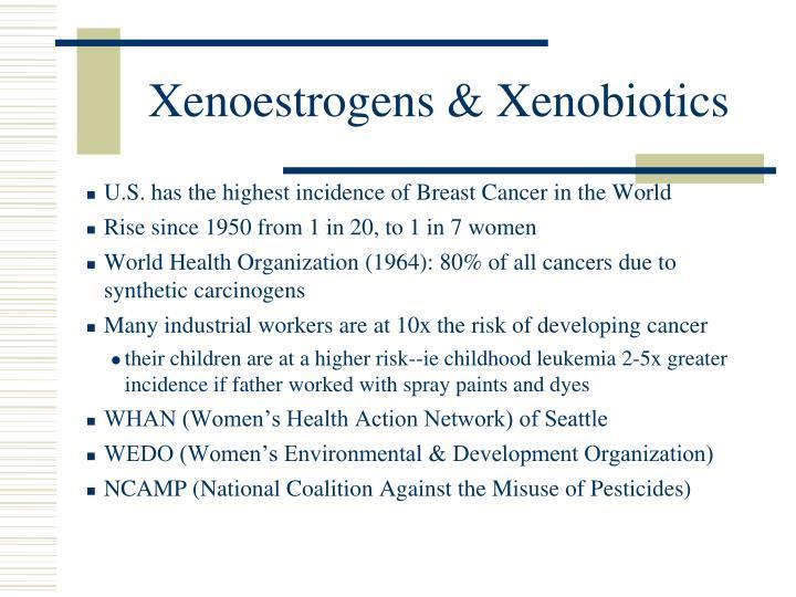 Xenoestrogens & Xenobiotics
