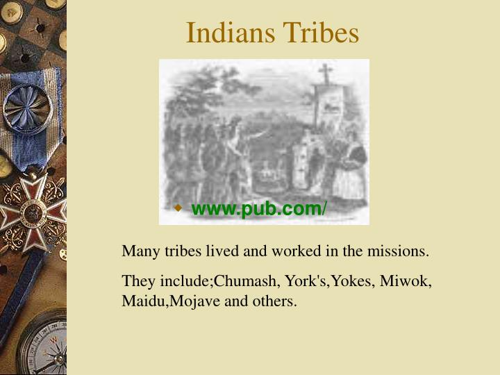 Indians Tribes