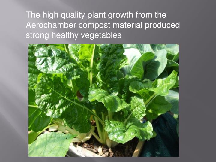 The high quality plant growth from the Aerochamber compost material produced strong healthy vegetables