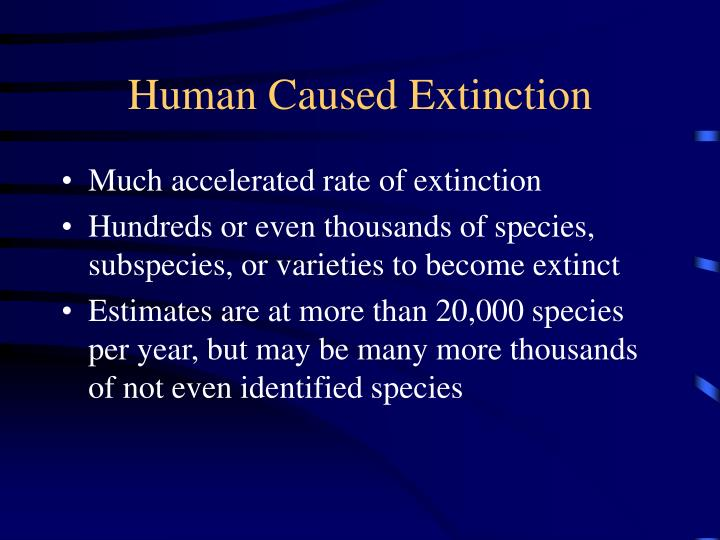 Human Caused Extinction