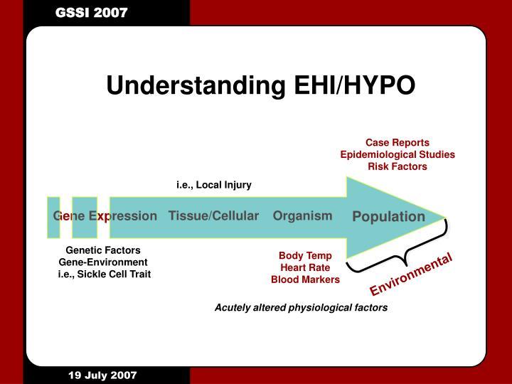 Understanding EHI/HYPO
