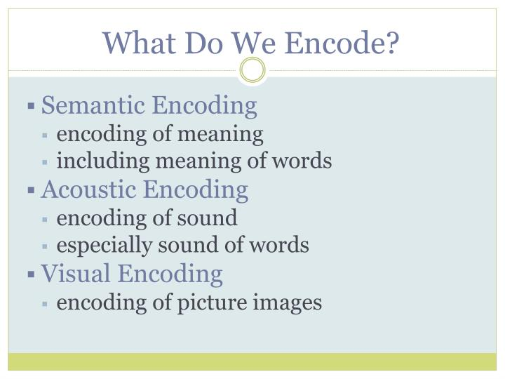 What Do We Encode?