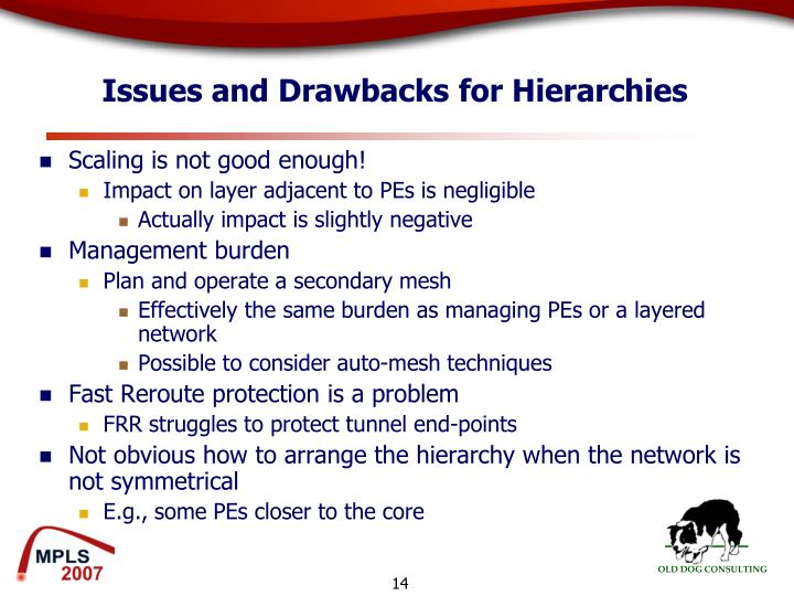 Issues and Drawbacks for Hierarchies