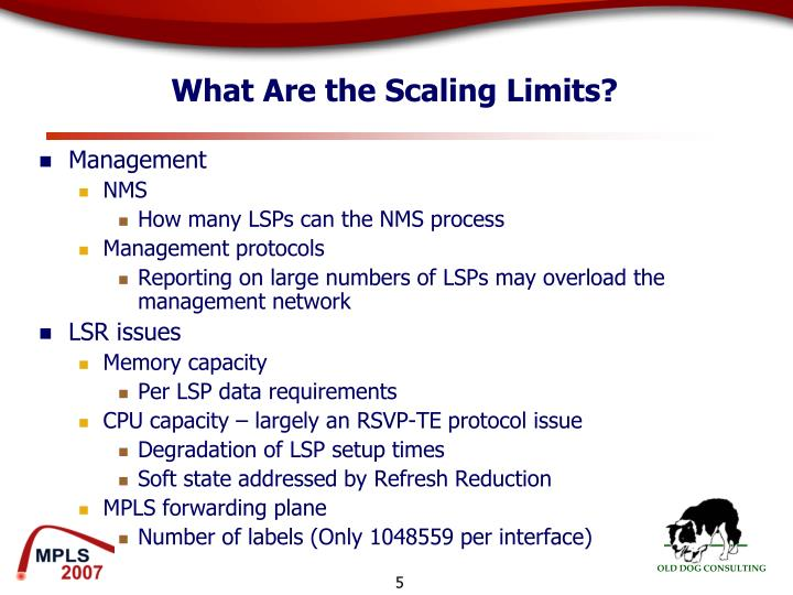 What Are the Scaling Limits?