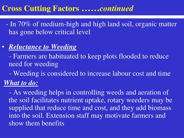 Cross Cutting Factors