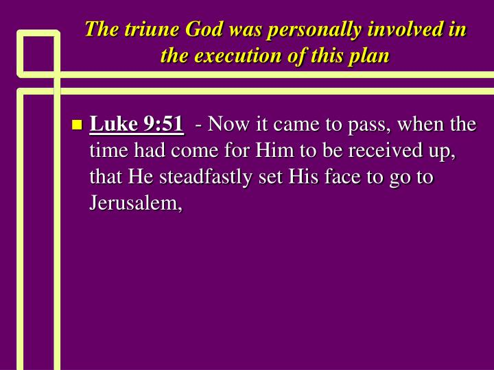 The triune God was personally involved in the execution of this plan