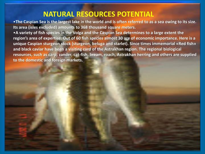 NATURAL RESOURCES POTENTIAL
