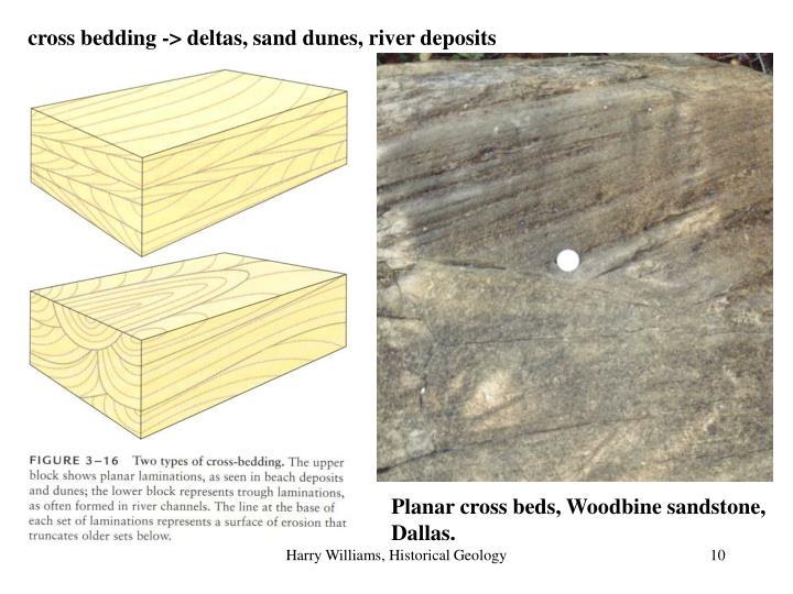 cross bedding -> deltas, sand dunes, river deposits