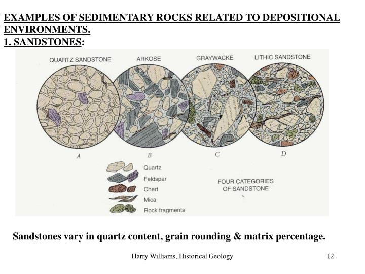 EXAMPLES OF SEDIMENTARY ROCKS RELATED TO DEPOSITIONAL ENVIRONMENTS.
