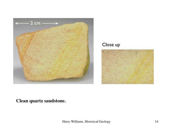 Clean quartz sandstone.