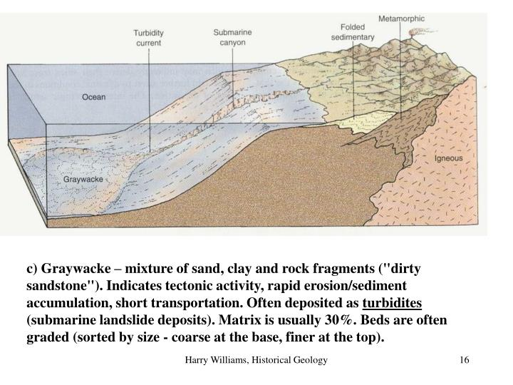 """c) Graywacke – mixture of sand, clay and rock fragments (""""dirty sandstone""""). Indicates tectonic activity, rapid erosion/sediment accumulation, short transportation. Often deposited as"""