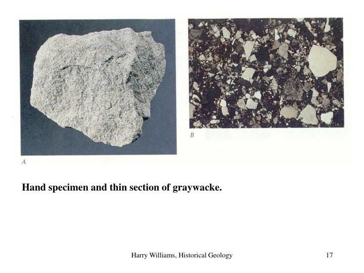 Hand specimen and thin section of graywacke.